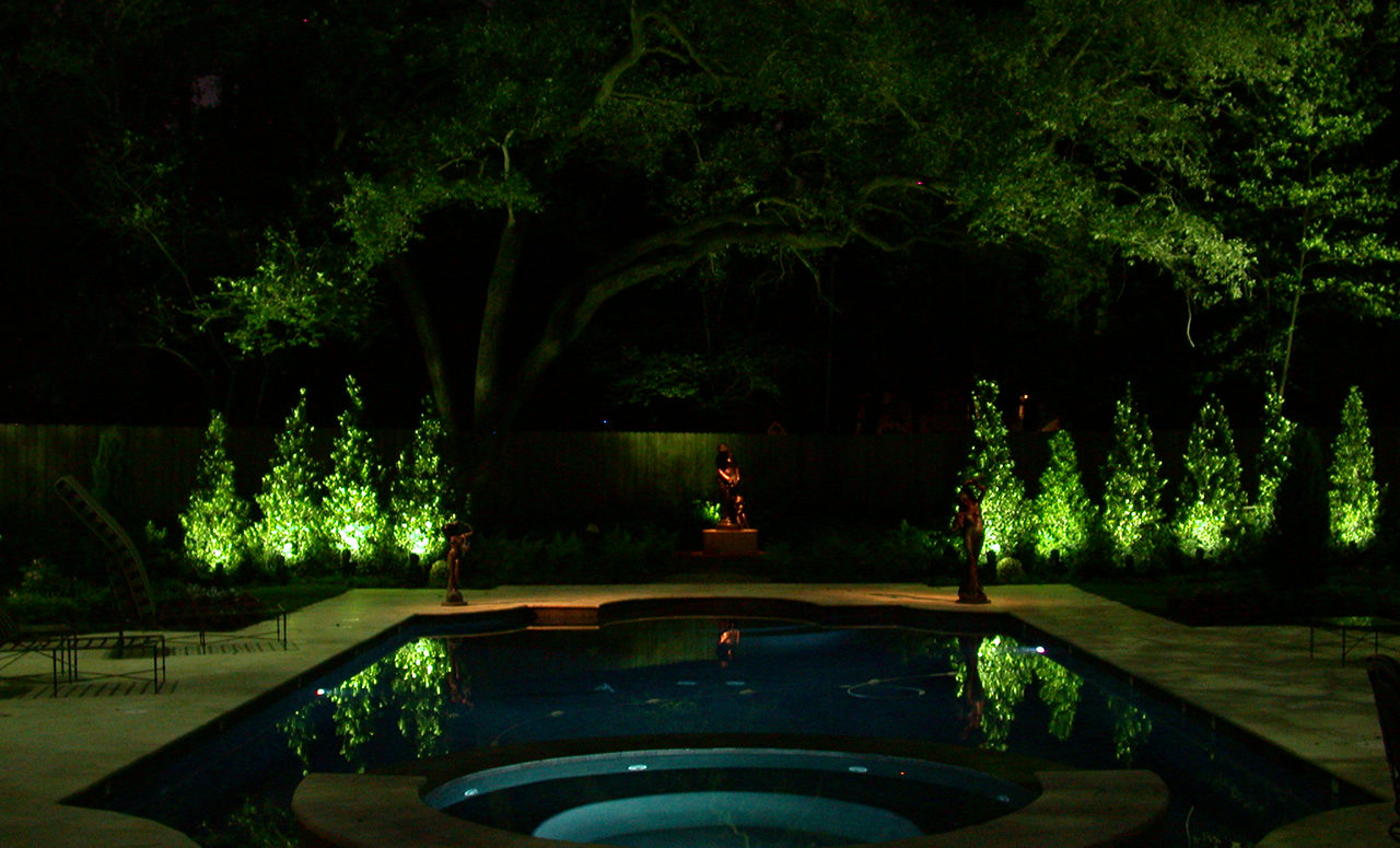 Natural Concepts light fixtures shining on ten trees lining the backside of a pool