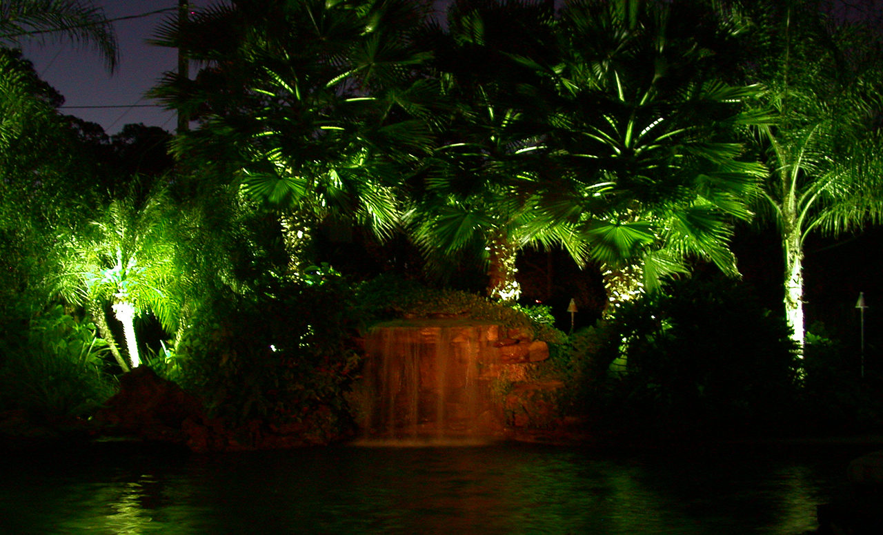 Natural Concepts light fixtures lighting the palm trees behind a pool waterfall