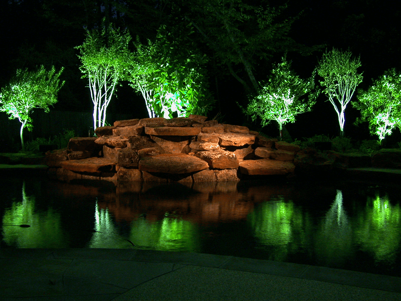 A swimming pool with reflections of the uplighting on the saplings behind the pool